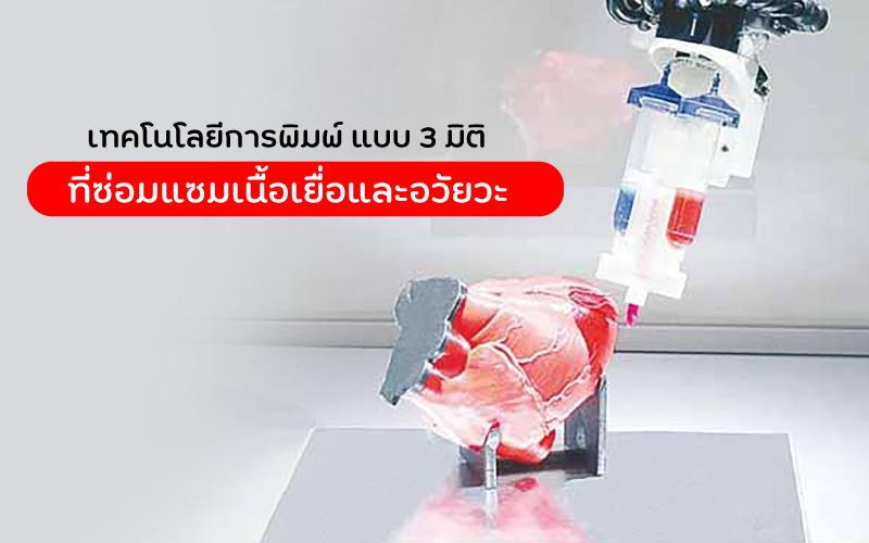 เทคโนโลยีการพิมพ์ แบบ 3 มิติ ที่ซ่อมแซมเนื้อเยื่อและอวัยวะ