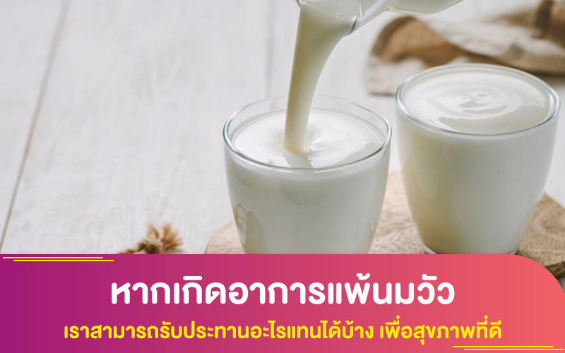 หากเกิดอาการแพ้นมวัว เราสามารถรับประทานอะไรแทนได้บ้าง เพื่อสุขภาพที่ดี